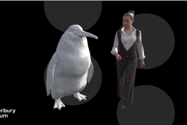 大ペンギンの化石発見!昔は人と同じ背の高さだった!?