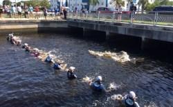 運河から出れなくなったイルカの親子を、水中人垣で助けた【動画】