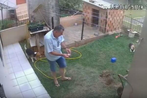アリの巣を駆除しようとガソリンをまいた男性、庭全体を破壊してしまう
