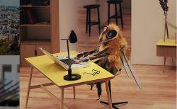 ミツバチ減少阻止のため、フランスで創作されたハチ・インフルエンサーが可愛い