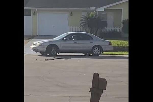 車が勝手にバックしながら回り続ける…車内にいたワンコを救助