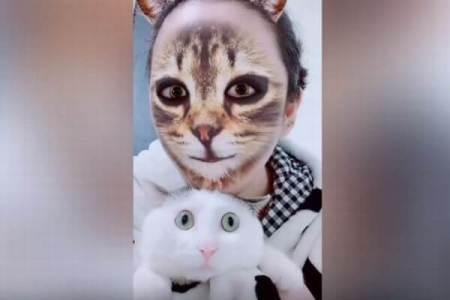 ネコ・フィルターをかけた飼い主にニャンコ驚愕、犬バージョンの動画も登場