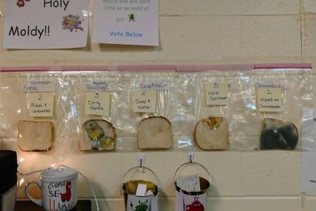 食パンを使った小学校の実験、手洗いの大事さが分かると話題に