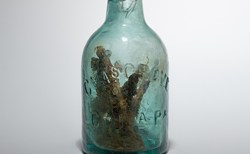 南北戦争時代の「魔女の瓶」が、米道路の中央分離帯から掘り出された