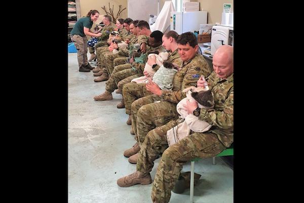森林火災に出動したオーストラリアの兵士たちが、空き時間にコアラの看護