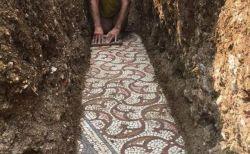 ローマ時代の美しいタイルの床、ほぼ完璧な保存状態で発掘される