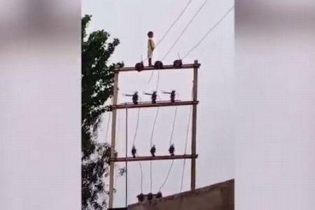 まさか!インドで5歳の少年が高さ7mの電柱に立っている姿が目撃される