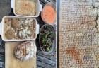 古代メソポタミアの石板に書かれた最古のレシピを、実際に作ってみたら・・・