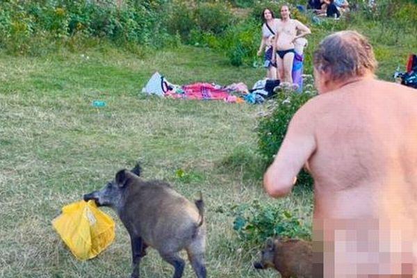 裸の男性の荷物を奪ったイノシシがピンチ、人々が殺処分の中止を求める