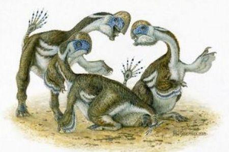 歯のない口、指が2本しかない恐竜の化石、モンゴルのゴビ砂漠で発見