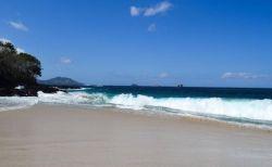 美しい南の島に「ヒトの足」、ビーチに打ち上げられているのを発見