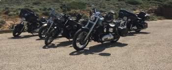 Harley Davidson Videoanleitungen