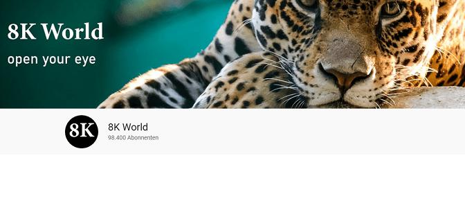8K World