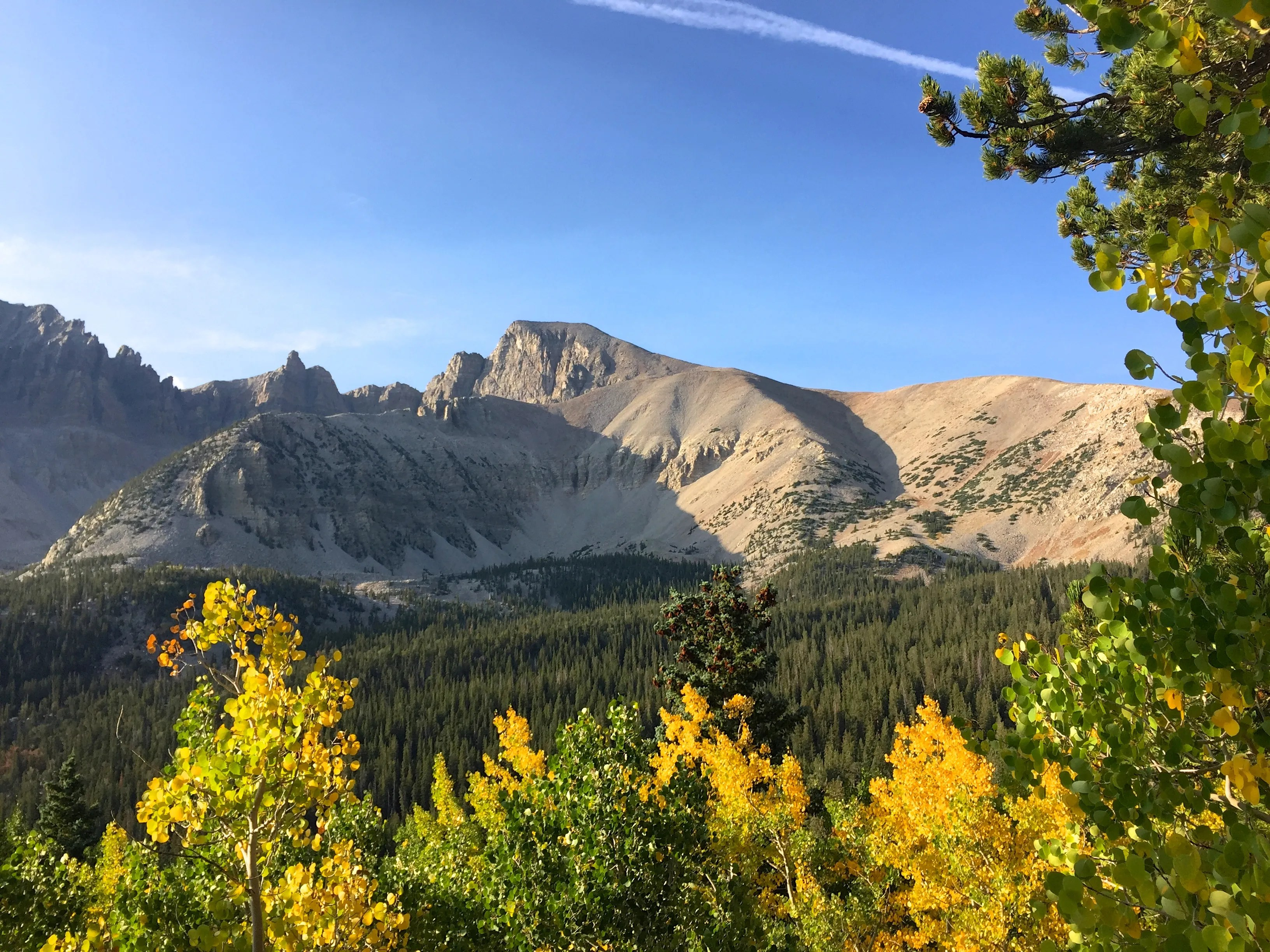 VIDEO: Great Basin National Park