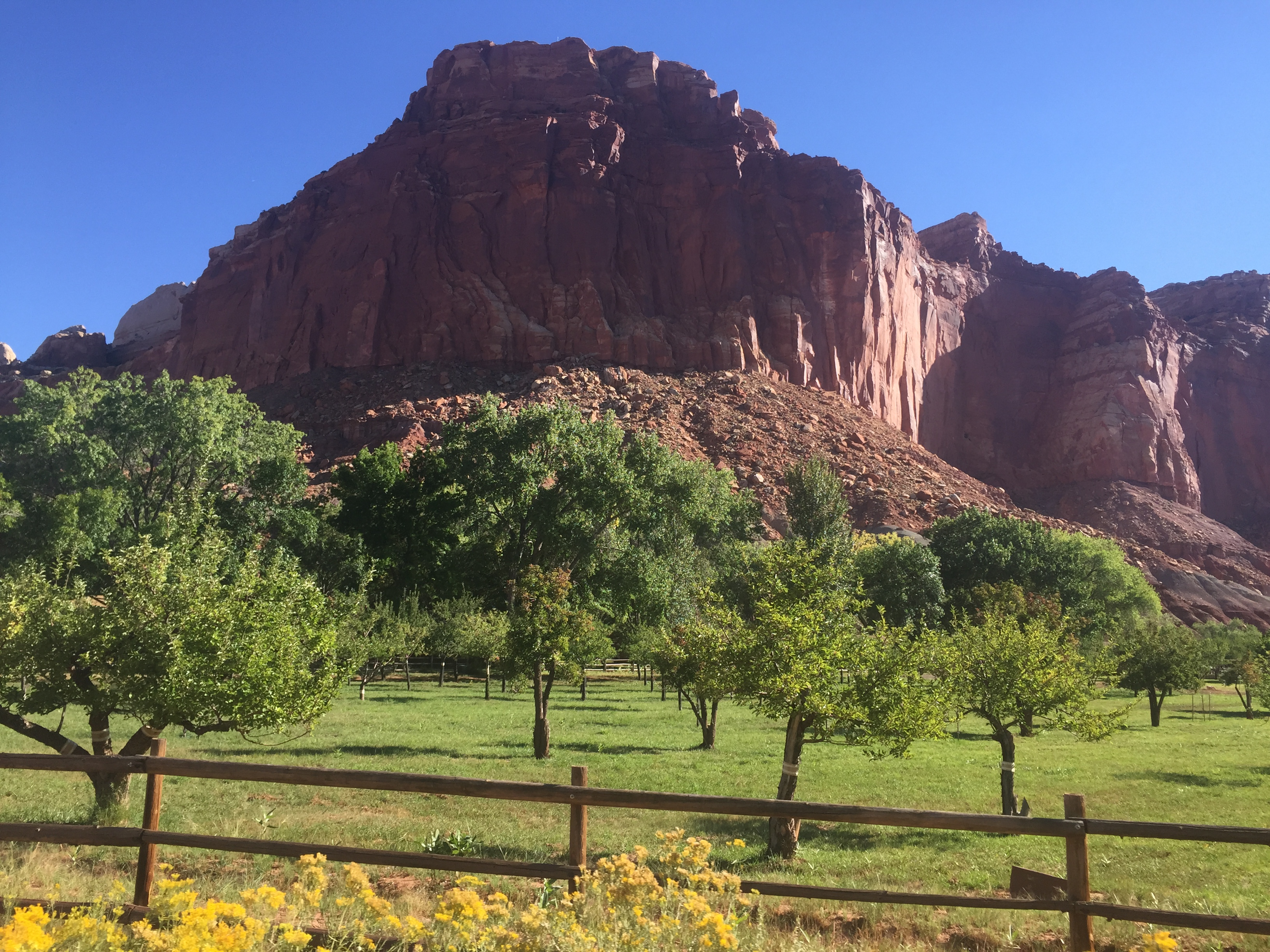 VIDEO: Capitol Reef National Park