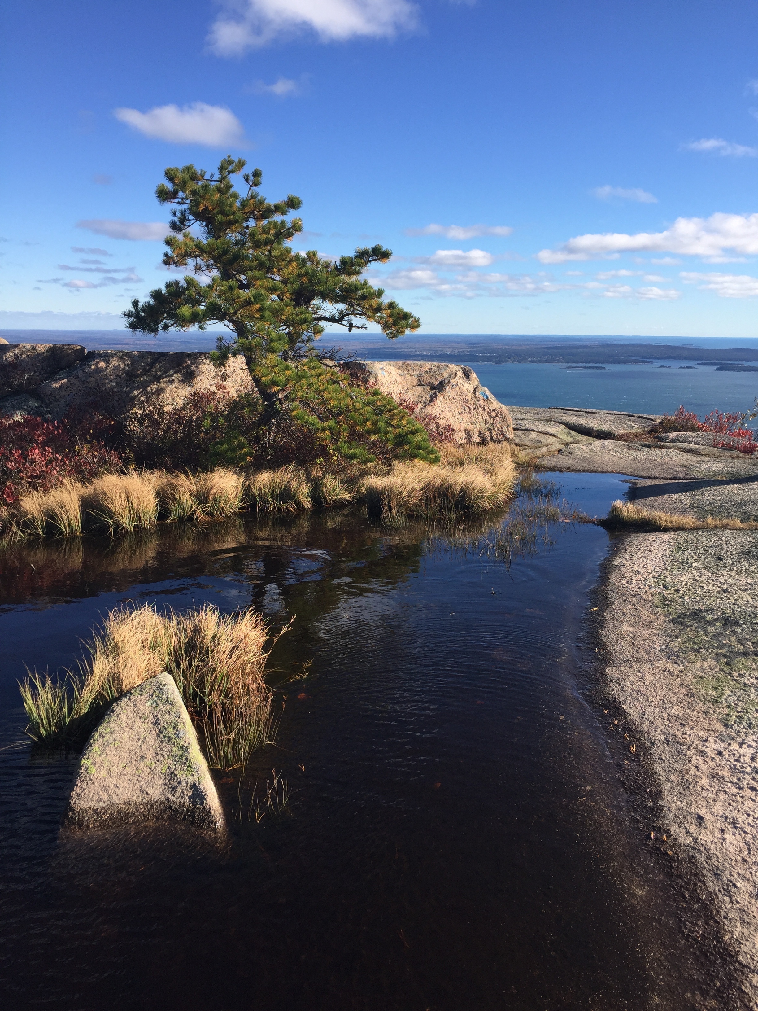 THE SUPERLATIVES OF ACADIA NATIONAL PARK
