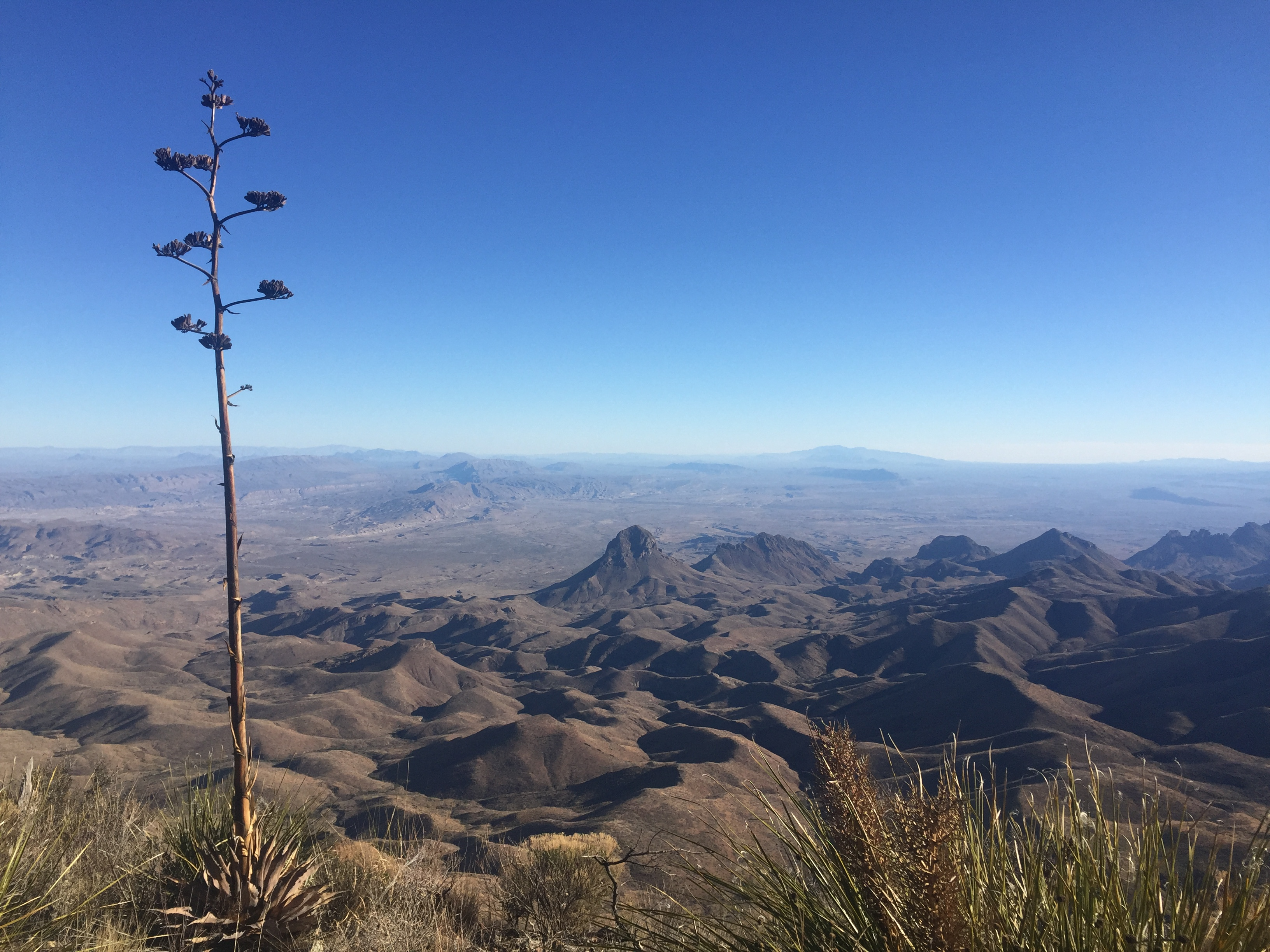 VIDEO: Big Bend National Park