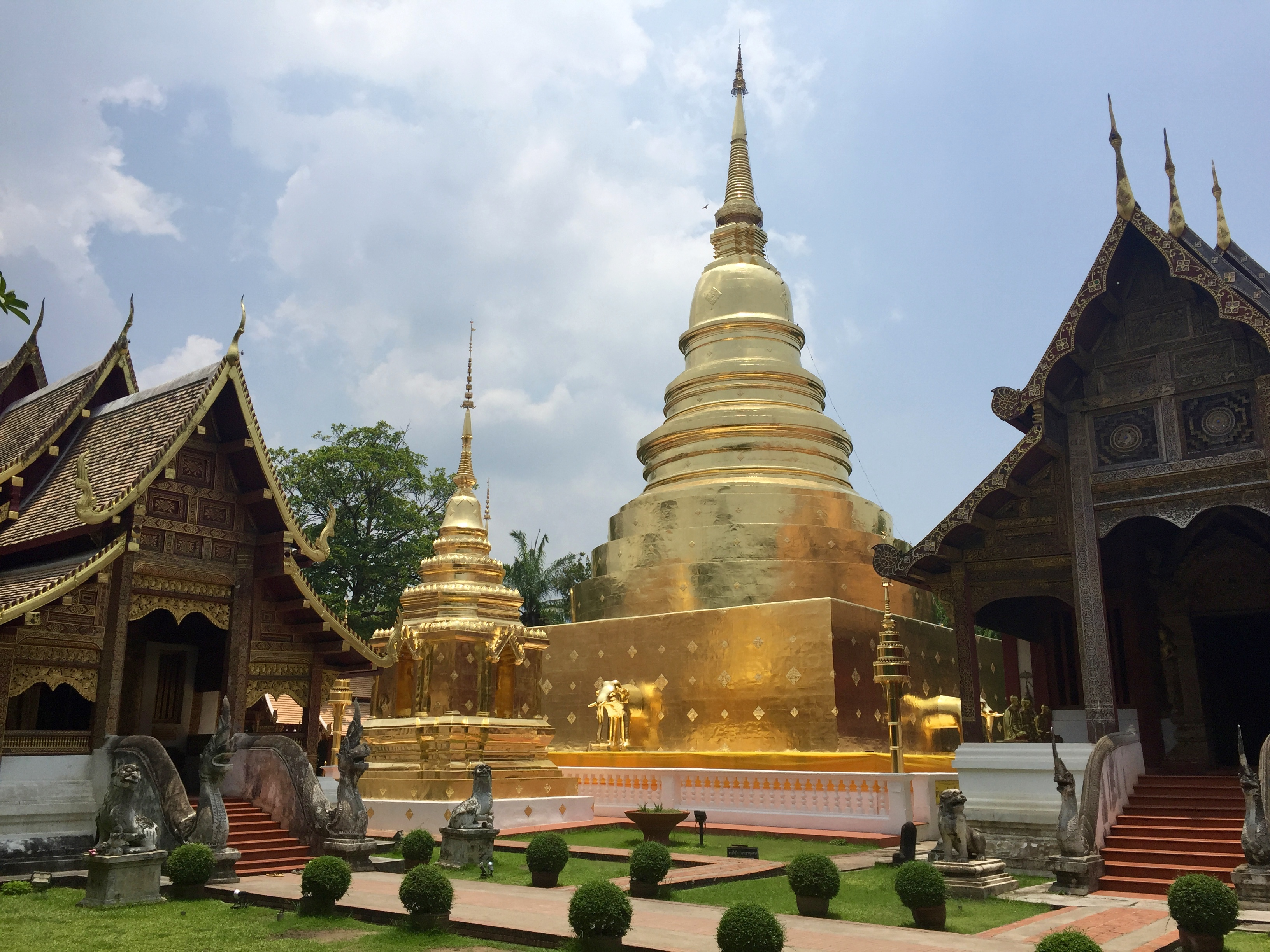 Southeast Asia Trip Report: Chiang Mai, Thailand
