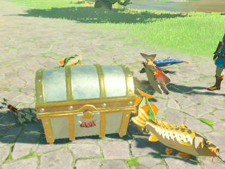 breath of the wild link looking at treasure chest surrounded by fish