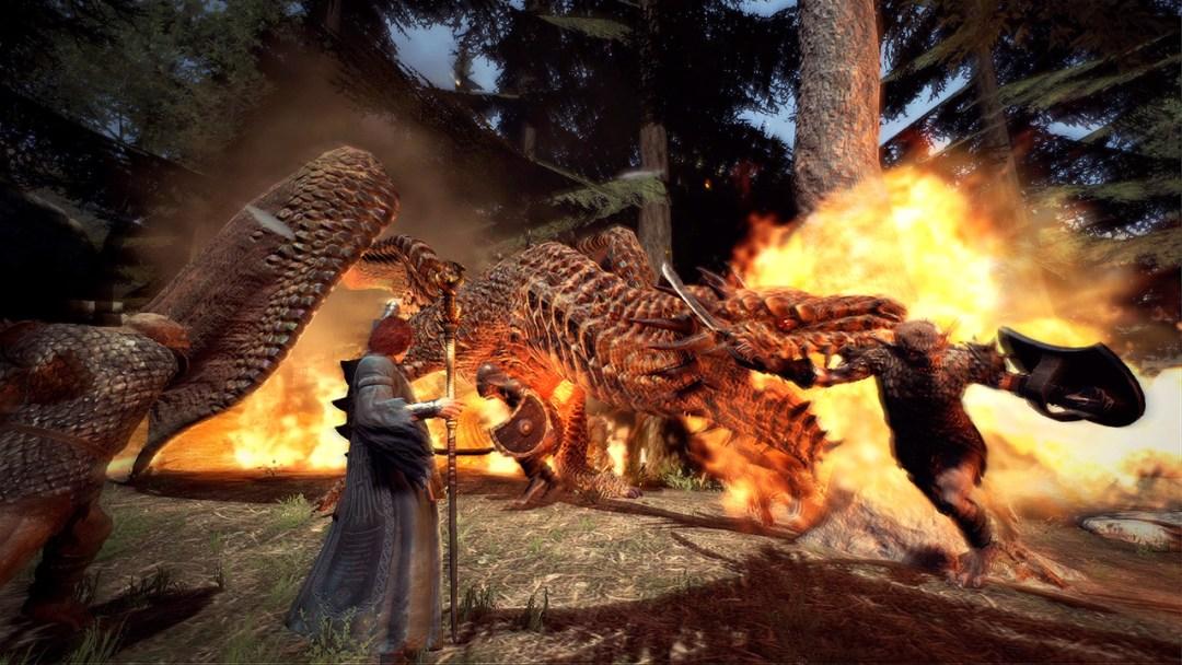 Dragons Dogma Dark Arisen mage