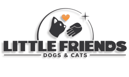 New Trailer and Pre-Orders Live for Little Friends: Dogs & Cats on Nintendo Switch