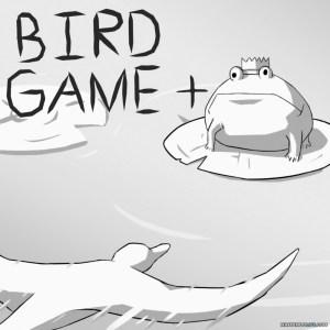bird game + cover