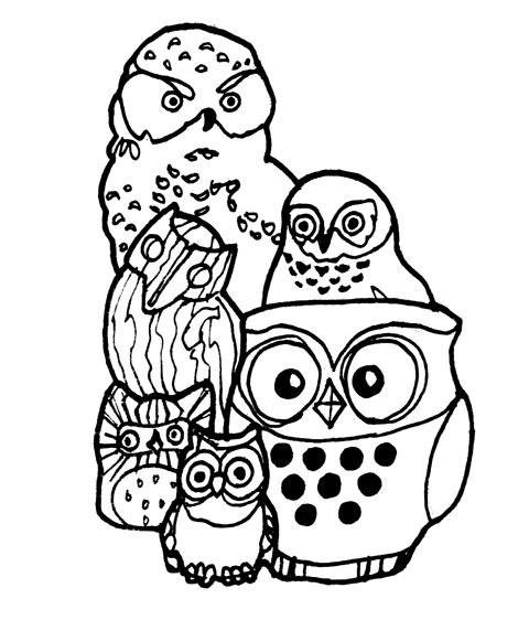 owl-collection