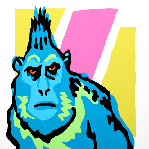 celebes-black-ape-480px