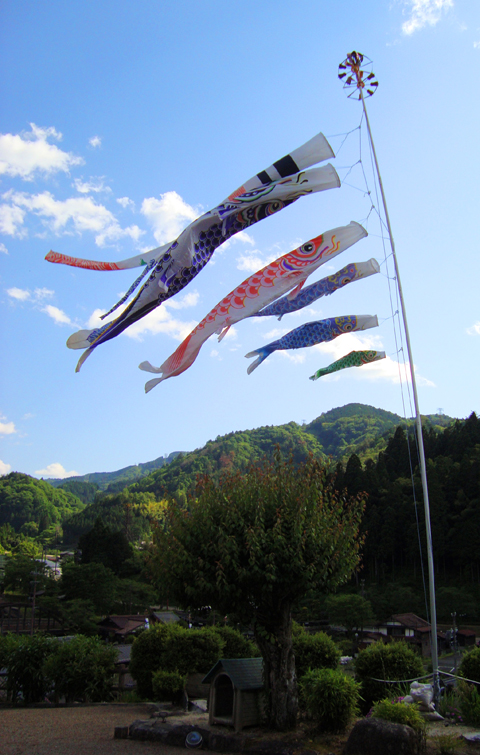 27_fish flags tsumago