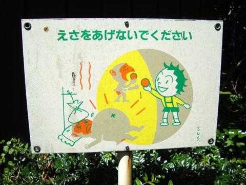 sick-monkey