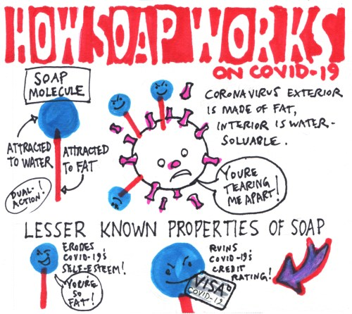 How Soap Works on Covid 19