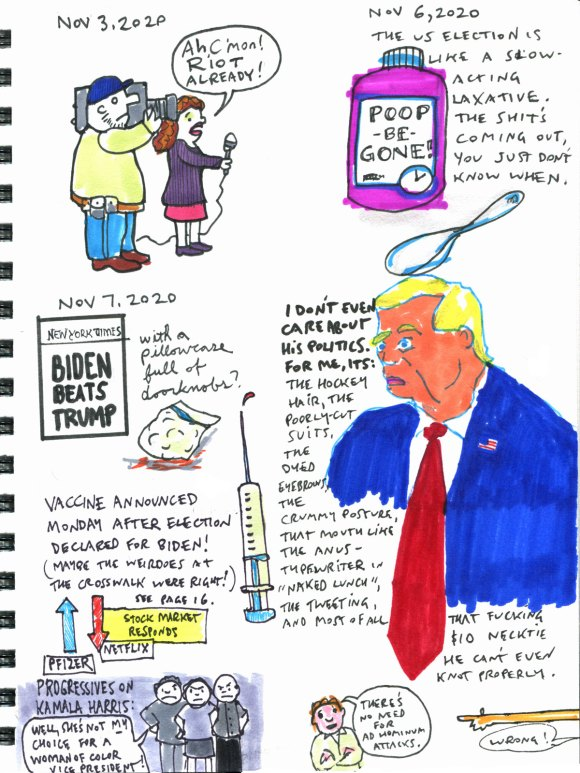 My Pandemic Diary Page 22 Trump, vaccine, US 2020 election