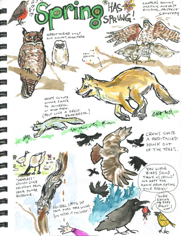 My Pandemic Diary 2 page 48 Spring nature drawings