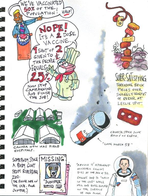 My Pandemic Diary 2 page 57 vaccine math, stolen goat, Michael Collins, Leslie Spit