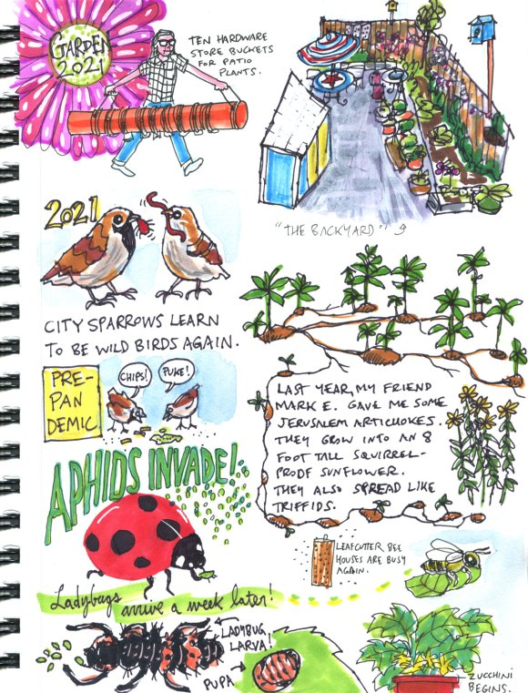 My Pandemic Diary part 3 Page 4 Summer in the garden