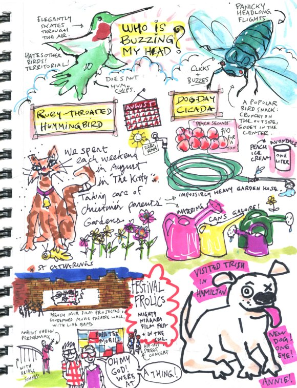My Pandemic Diary part 3 Page 16 backyard guests, NAC, one eyed dog