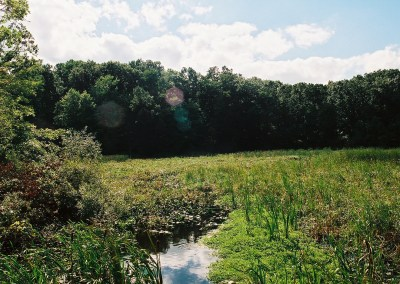 Coon Hollow Preserve