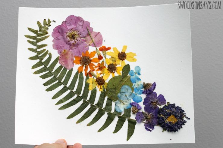 rainbow-of-pressed-flowers