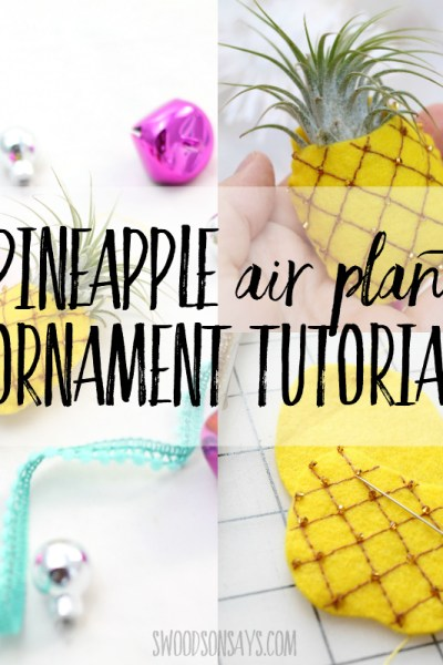 how to make a pineapple air plant ornament