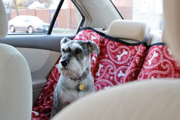 how to sew a backseat protector for a dog