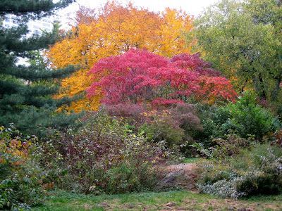 blog autumn