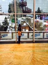 Ski Dubai at MOE