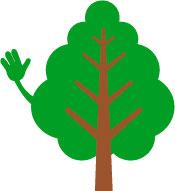 Gute Waldbewirtschaftung