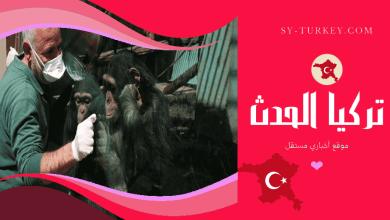 """صورة حديقة """"فاروق ياتشين"""" للحيوانات تنعم بالهدوء في غياب الزوّار"""