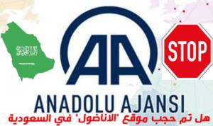 """تم حجب موقع الاناضول في السعودية 300x178 - هل تم حجب موقع """"الاناضول"""" في السعودية (ناشطون وإعلاميون)"""