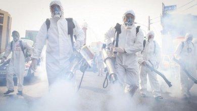 صورة منظمة الصحة: ظهور سلالة جديدة من فيروس كورونا بعدة دول والوضع يخرج عن السيطرة