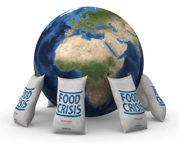 تأتي جهود العلماء في محاولة لمكافحة الفقر الذي ستزداد نسبته خلالالسنوات القادمة من 10% من سكان العالم