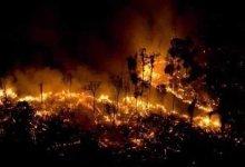 صورة بعد صلاة الاستسقاء رأس النظام يجمع التبرعات لمتضرري الحرائق في غرب سوريا