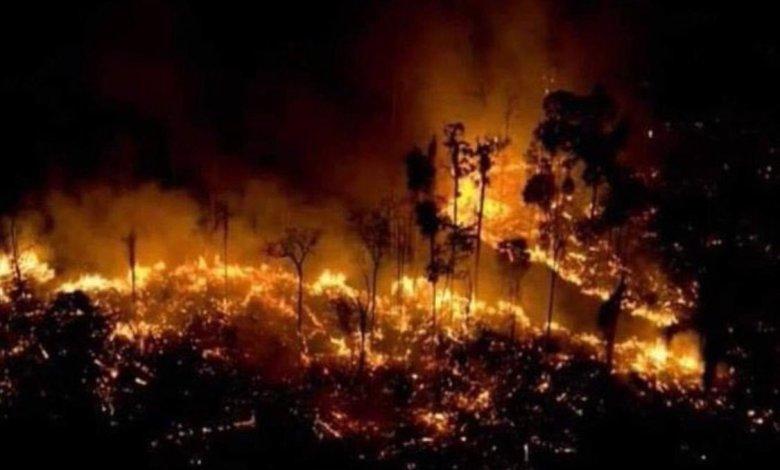 2 1 - بعد صلاة الاستسقاء رأس النظام يجمع التبرعات لمتضرري الحرائق في غرب سوريا