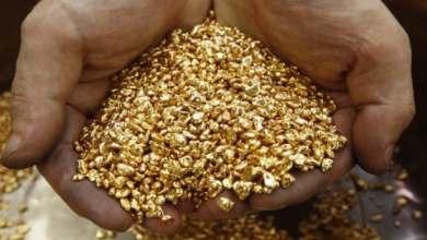 صورة تركيا تعثر على كنز ثمين وتوقعات بتسجيل تركيا رقم قياسي بإنتاج الذهب